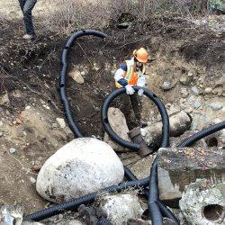 Snake Den Construction